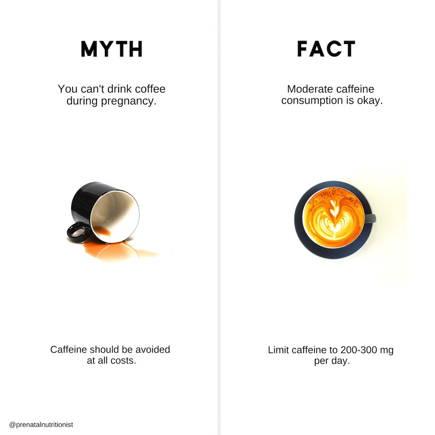 coffee during pregnancy myth or fact