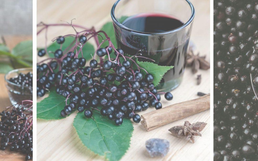 Is Elderberry Safe For Pregnancy